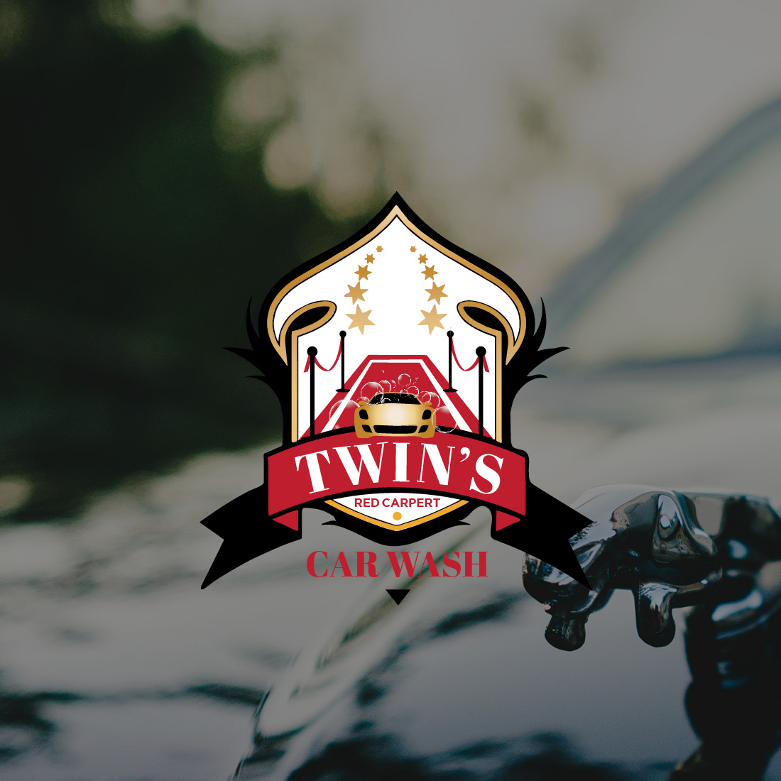 Twin's Red Carpet Auto Detailing Service